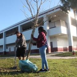 MSD students participate in community service
