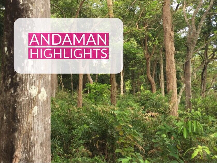 Andaman trip itinerary and highlights