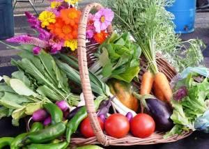 farm produce in basket