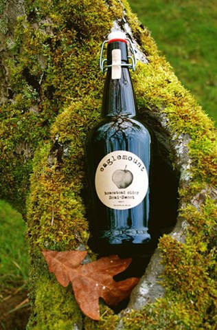 Cider nestled in a cavity in the tree