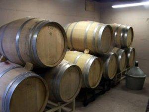 Oak barrels for aging the wine.