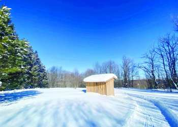 This winter, the Friends of Stoney Pond (FROSTY) has partnered with several local organizations to groom trails for cross-country skiing and snowshoeing throughout the Cazenovia area. (Submitted)