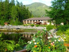 resort-greenery