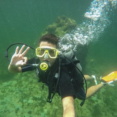 snorkeling diving
