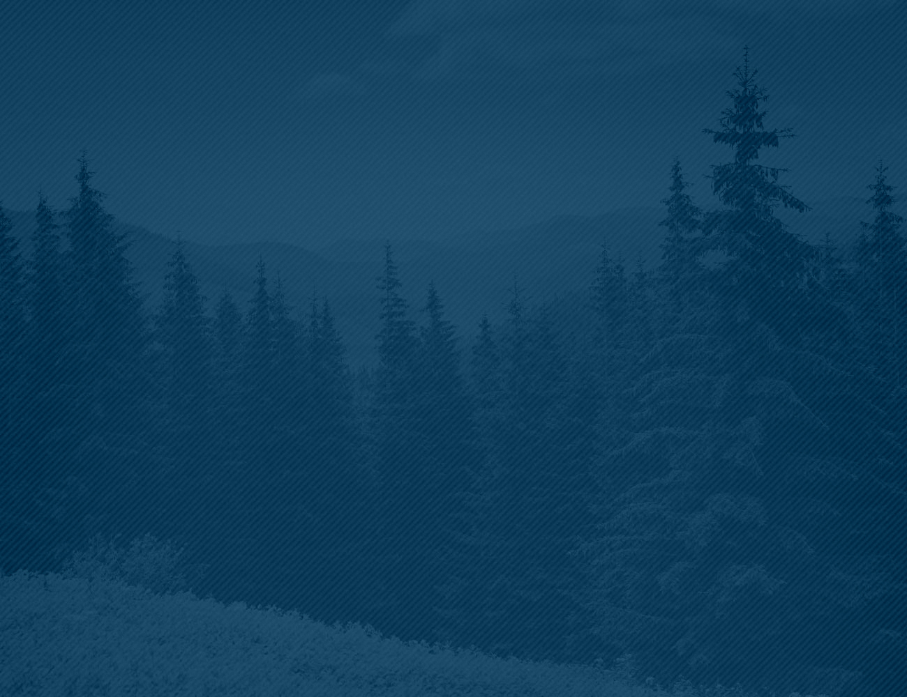 forest_background_blue