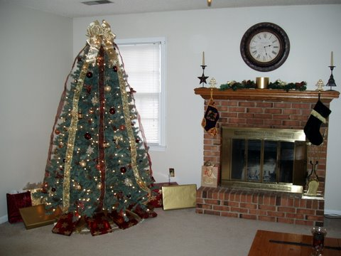 Christmas tree from our house in Irmo, SC