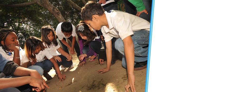 Rancho Los Alamitos Education