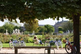 Le Jardin des Tuileries, au pieds du musée du Louvre