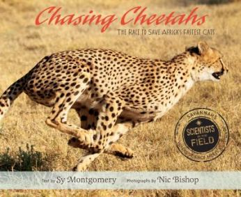 Chasing Cheetahs by Sy Montgomery and Nic Bishop