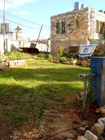 D.Peschel - 'Garden' on Shuhada Street - israeli urban management - Hebron - 281214