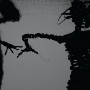 The Twilight Singers - Dynamite Steps