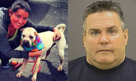 baltimore-police-dog-ktla