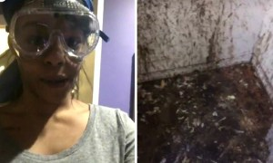 Azealia Banks Is Captured On Video Sacrificing Chickens In Her Closet