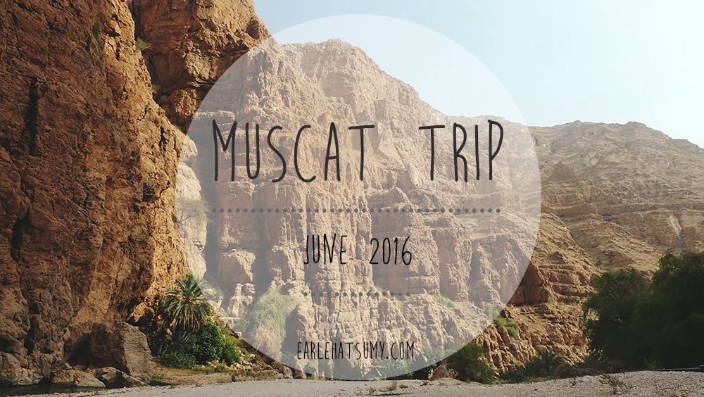 Salalah to Muscat trip