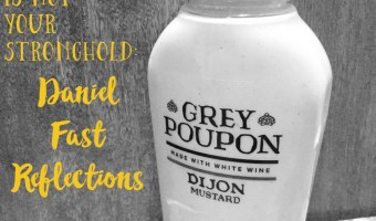 Mustard is Not Your Stronghold: Daniel Fast Reflections