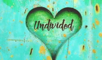 An Undivided Heart