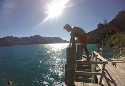 Akul dock jumping off Motuara Island