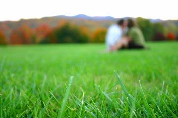 couplegrass