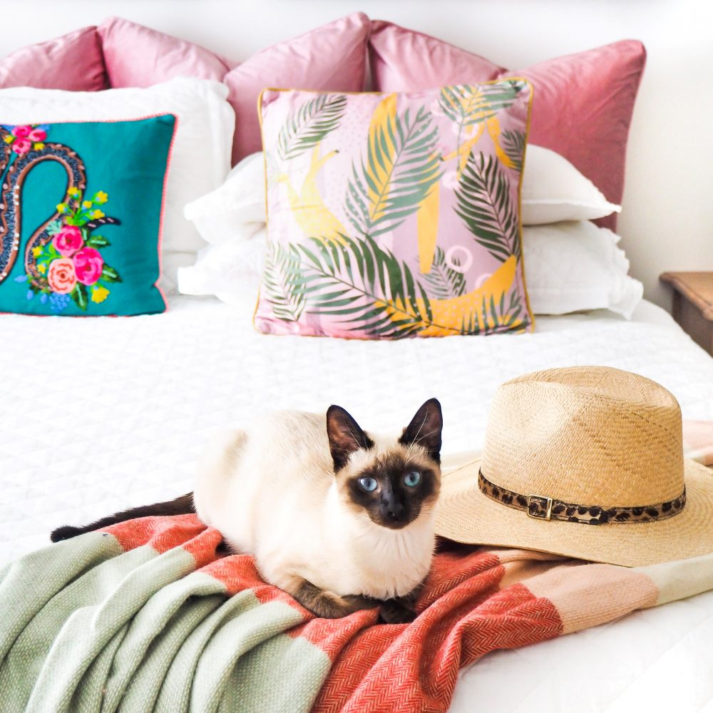 Get the 'Tropical Vibe' in your home with tropical cushions