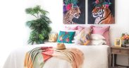 Get some 'Tropical Vibes' in your home
