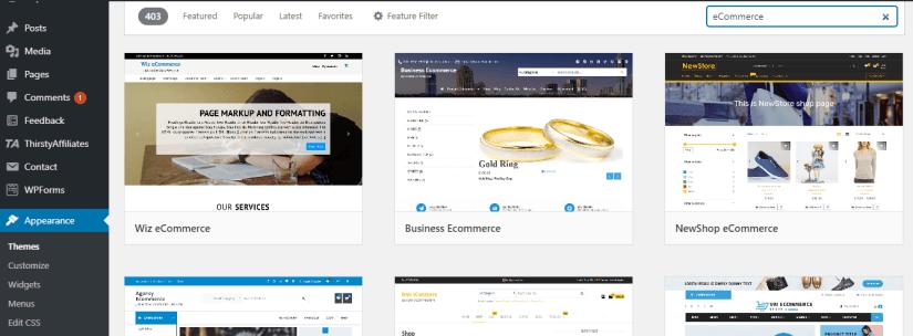 Installing a WordPress eCommerce Theme