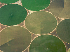 green circles created by irrigation