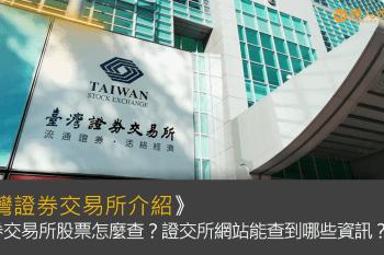 台灣證券交易所介紹》證券交易所股票怎麼查?證交所網站能查到哪些資訊?