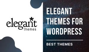 Elegant Themes For WordPress – Best Professional Themes 2021