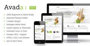 Wordpress Theme Avada