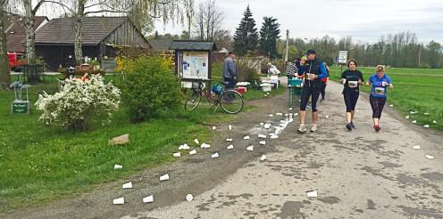 Spreewaldmarathon 2016 Lübbenau Verpflegungspunkt