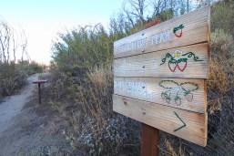 Strawberry Peak Sign