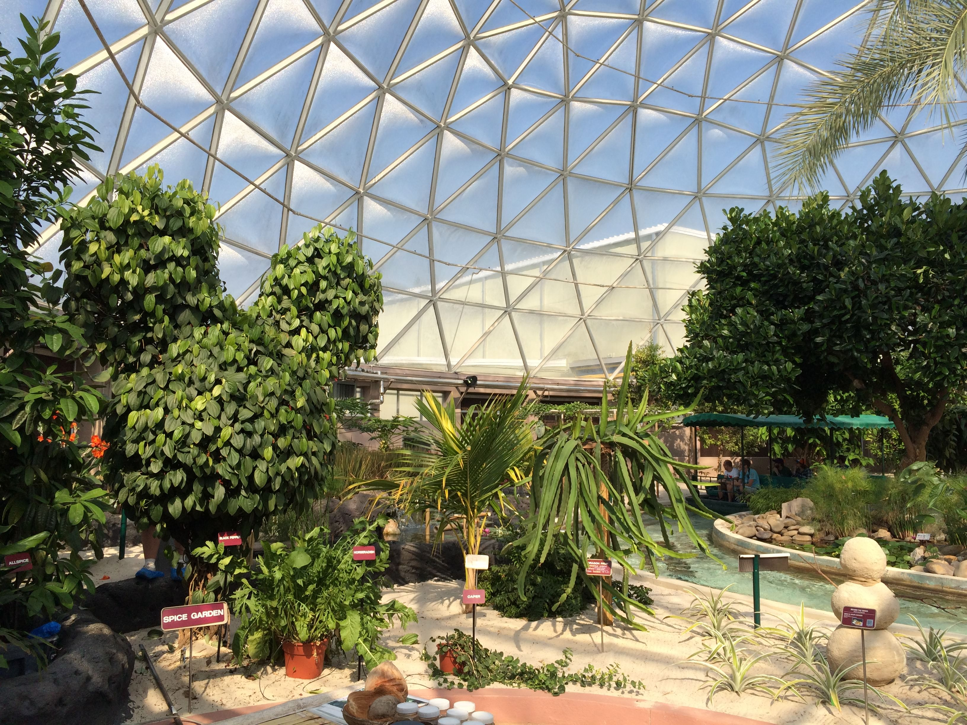 Image result for disney world epcot veggie gardens