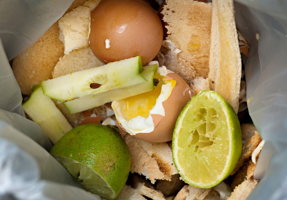 Time To Shift Our Thinking On Food Waste