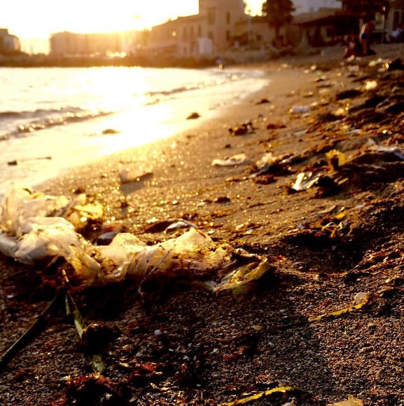 ocean pollution washed to shore