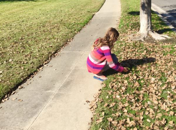 girl collecting fallen leaves