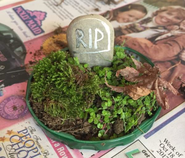 assemble the spooky terrarium on the upside-down lid of your container