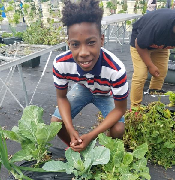 youth in greenhouse working with plants