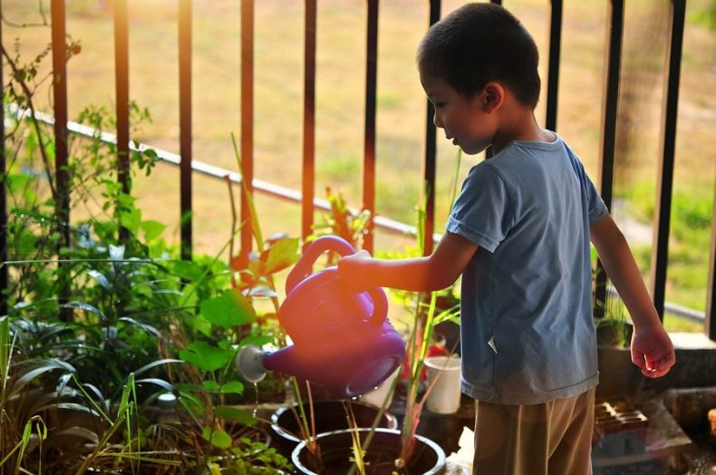 boy watering plants on patio