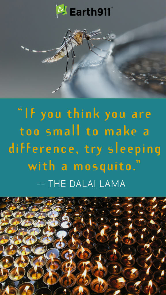 """""""If you think you are too small to make a difference, try sleeping with a mosquito."""" -- The Dalai Lama"""