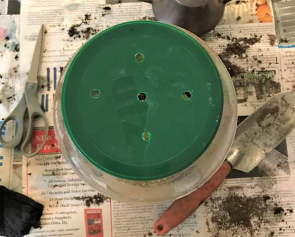 drill or puncture holes in the jar lid