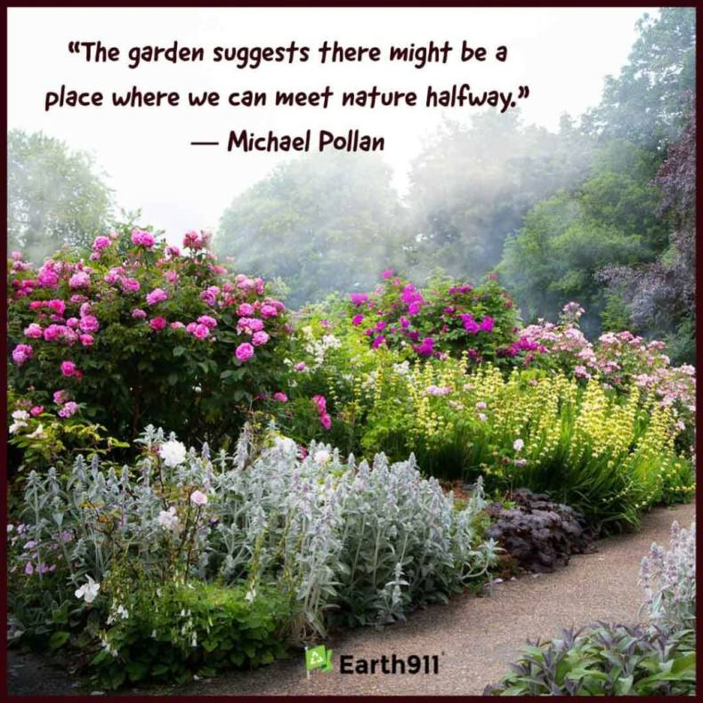"""The garden suggests there might be a place where we can meet nature halfway."" --Michael Pollan"