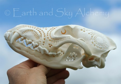 Hand Carved Coyote Skull 11
