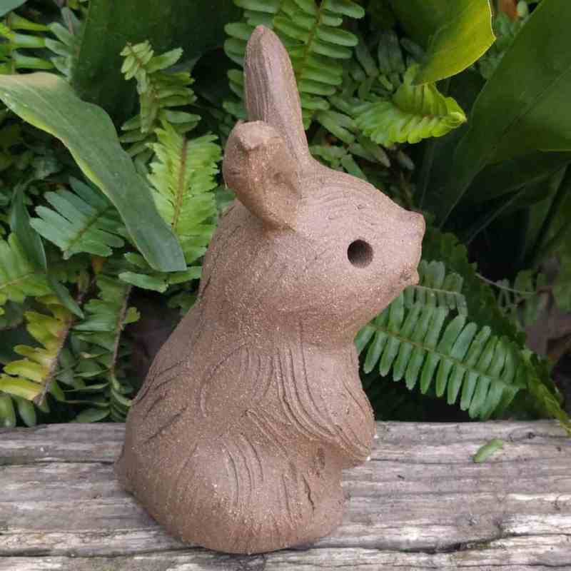 sitting_rabbit_without_ears_up_greenspace_10