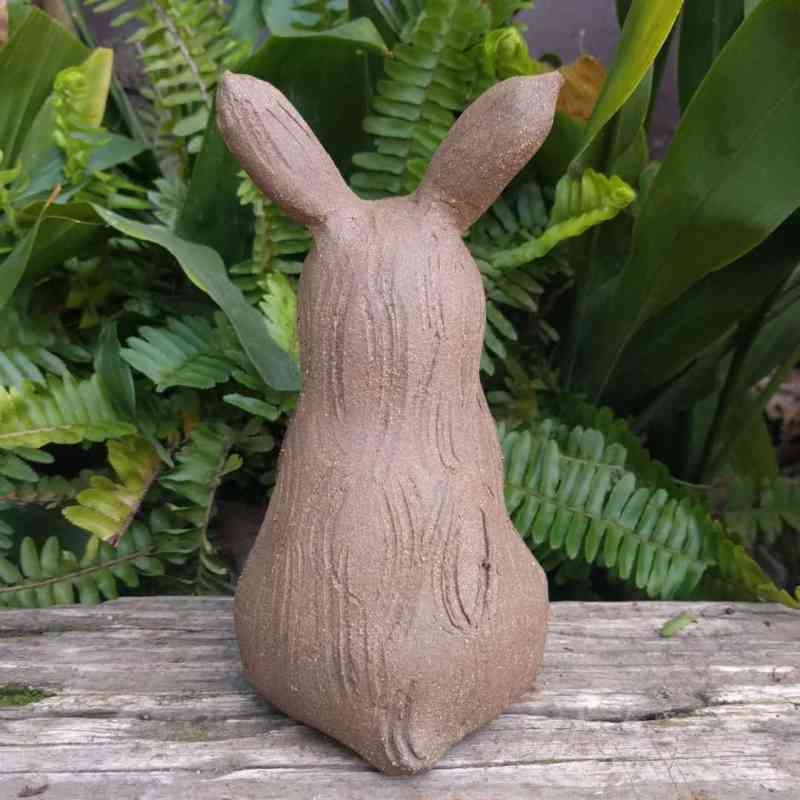 sitting_rabbit_without_ears_up_greenspace_8