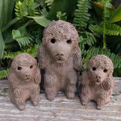 Sitting_poodle_group_1