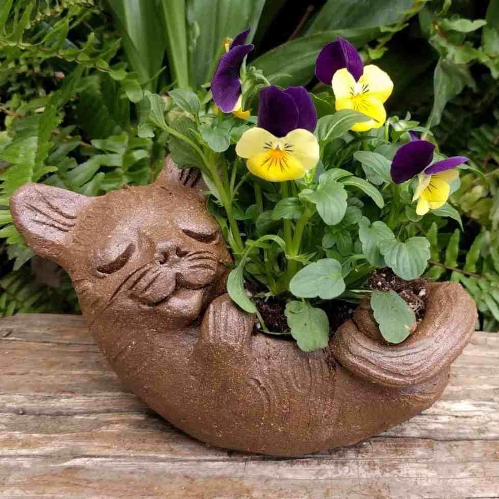 cat_back_planter_flowers_greenspace_12