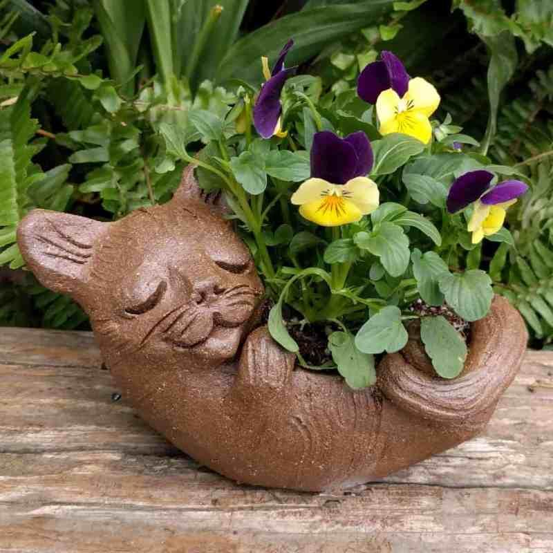 cat_back_planter_flowers_greenspace_5