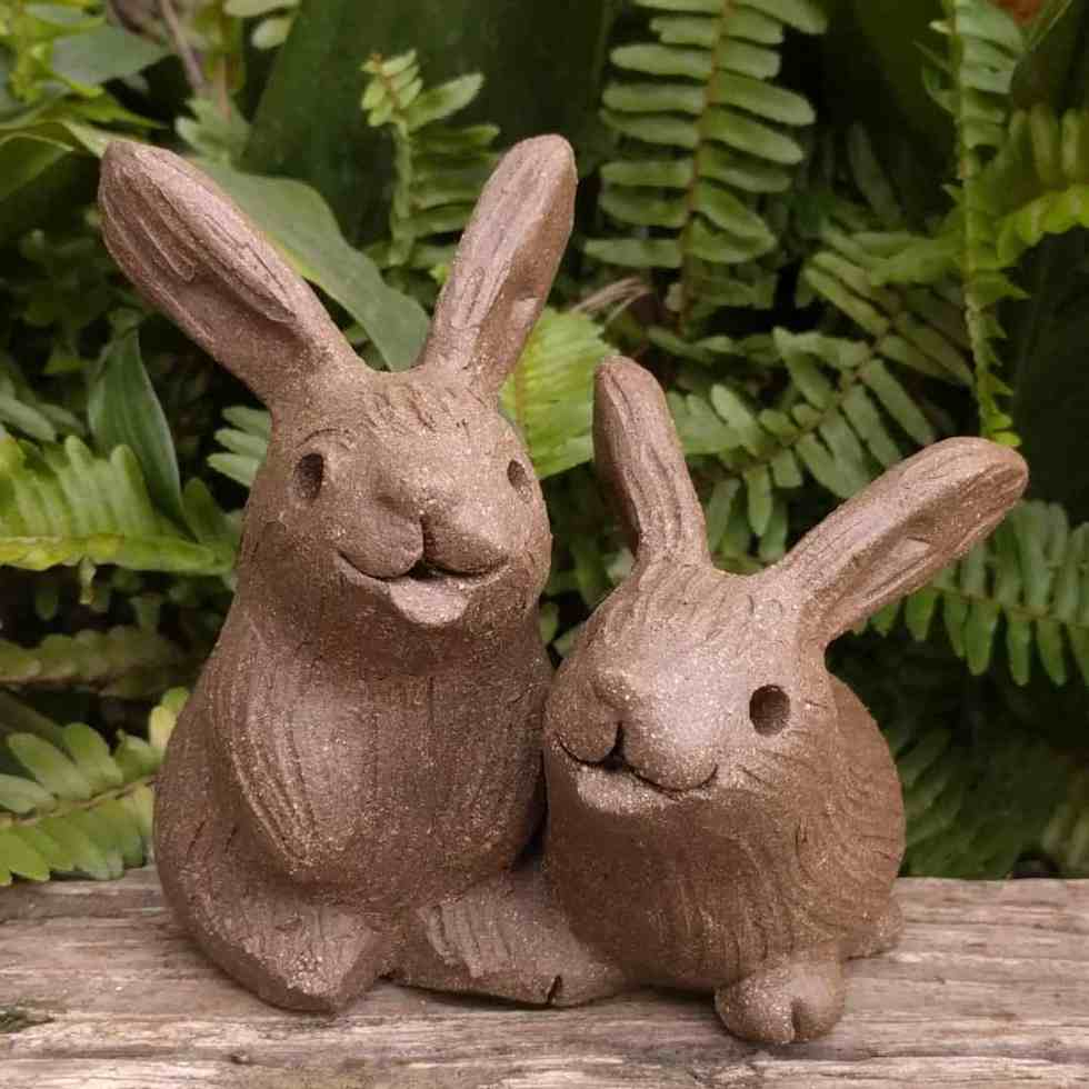 rabbit_pair_outside_3