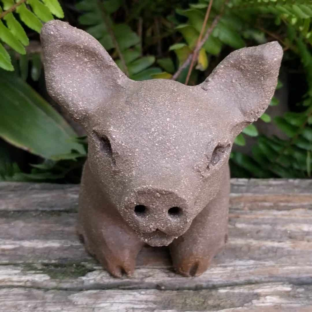 small_pig_outside_15