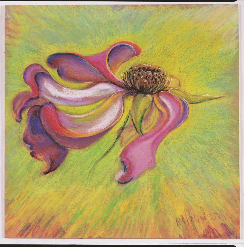 rose-drawing-margaret-hudson-fresno-4-1024